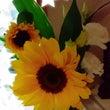 夏のお花。