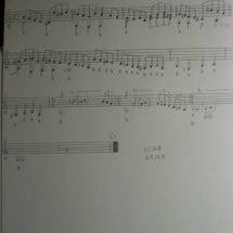 貴族の夢想【9絃ギタ…
