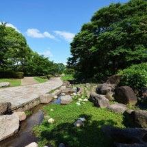 大阪城公園 あじさい…