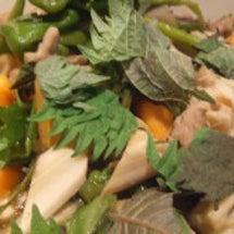 ごぼうと夏野菜の旨煮