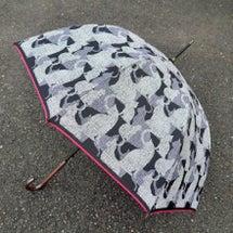 新しい傘があると、ど…