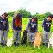 ‼️‼️夏の救助犬試…