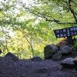 大山ユートピア~お花…