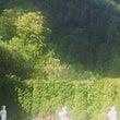 ルーマニアの景勝地シ…