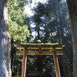 龍穴神社の光