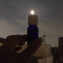 満月 パール富士