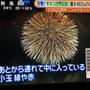 こうのす花火大会 (…