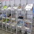 天神福岡駅で、POP…