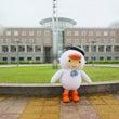 苫小牧駒澤大学の学校…