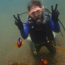 和歌山でのダイビング…