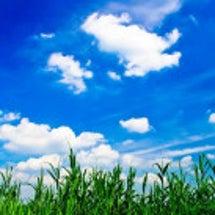 さわかな夏を過ごす@…