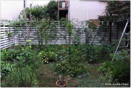 バラの庭 管理 小平市