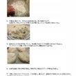 【レシピ】北欧みやげ…