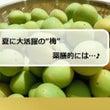 【プチ薬膳】梅は…♪