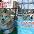 夏の合宿②
