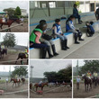 夏休み乗馬教室