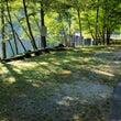 自然湖の草刈り