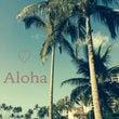 ハワイ滞在スタートで…