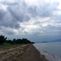 琵琶湖で水遊び☆