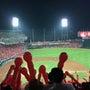 野球観戦 in ZO…