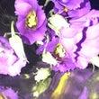 お花で涼しく