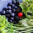 お庭の旬の果実たち(…