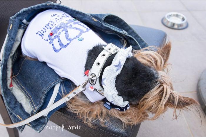 犬とおでかけ関西の避暑地でランチ