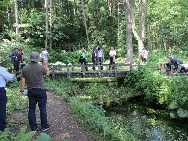 湿原観察から、姫川源流を散策3