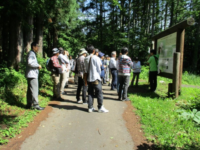 湿原観察から、姫川源流を散策1