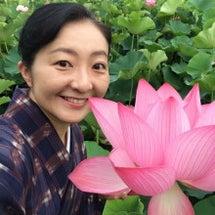 朝一番の蓮の花