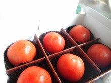 ジュドべべ トマト