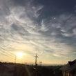 今朝の早朝の空、日輪…