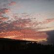 バリ島の田舎の朝は大…