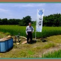 河越米は川越丸広さん…