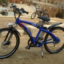 電気自転車が人気です