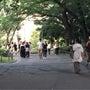 都内のある公園、視察