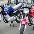 《 #バイク女子 #…