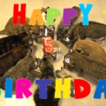 小侍郎5歳の誕生日
