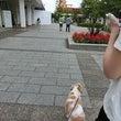 前橋花火は8月13日
