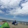 海は広いな大きいな。
