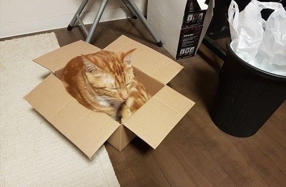小さい箱も自分の部屋にします その2