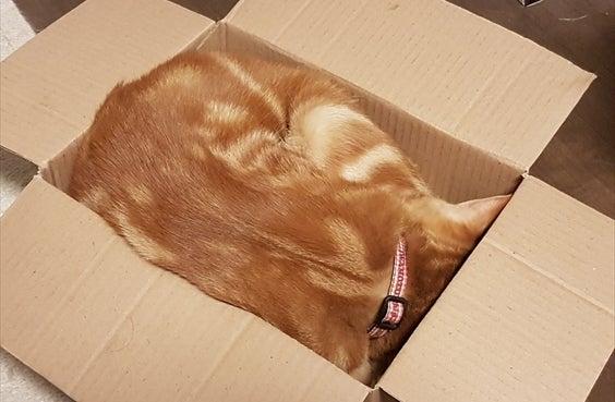 小さい箱も自分の部屋にします その3