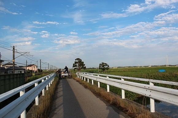 境川の無名橋