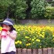 家族と公園で写真撮影…