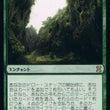 【MTG】緑の強力ド…