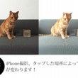 iPhone撮影お悩…