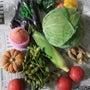 野菜のおとりよせ