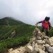 夏、山へ(西穂高岳②…