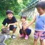 猿に会いに