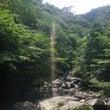 キラキラ照葉樹林へ☆